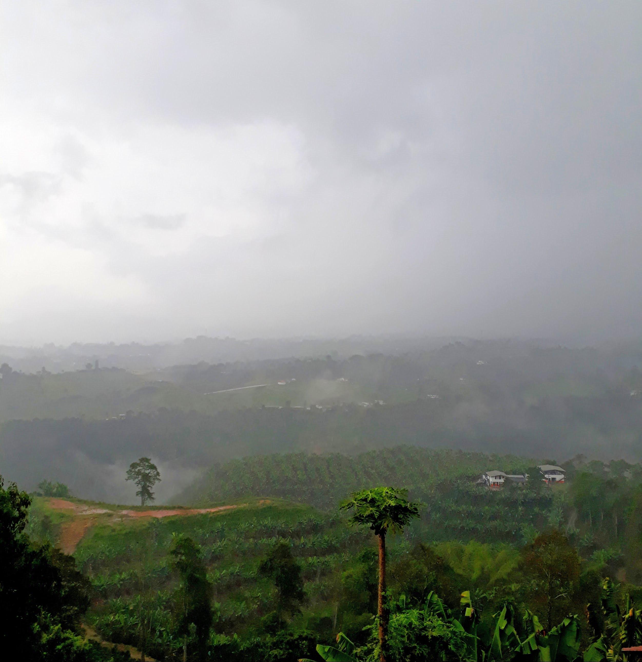 Foto de la neblina colombiana: Pereira.