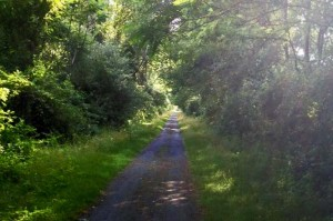 Road photo 7-9-15
